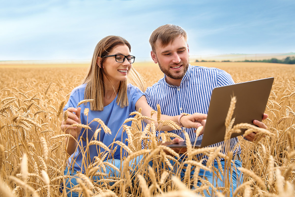 fotowoltaika dla rolnika - panele pv, systemy montazowe, inwertery