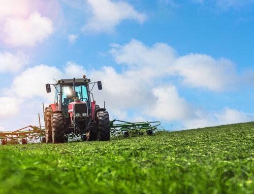 Fotowoltaika dla rolników. Po jakie rozwiązania warto sięgnąć?