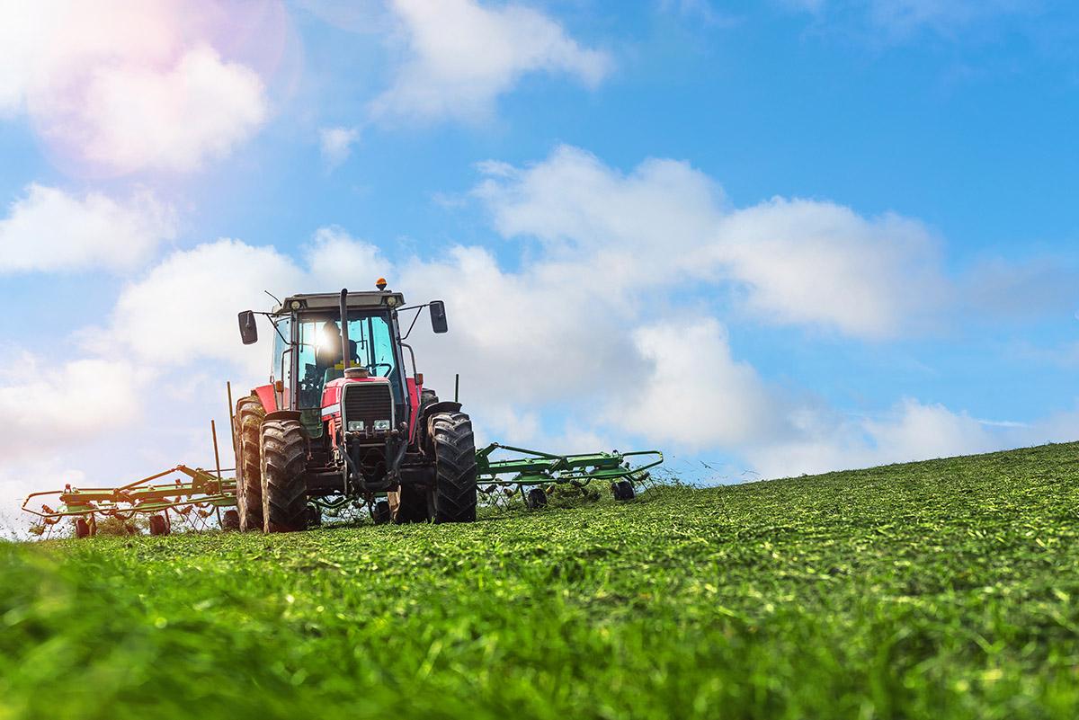 systemy fotowoltaiczne dla rolnikow